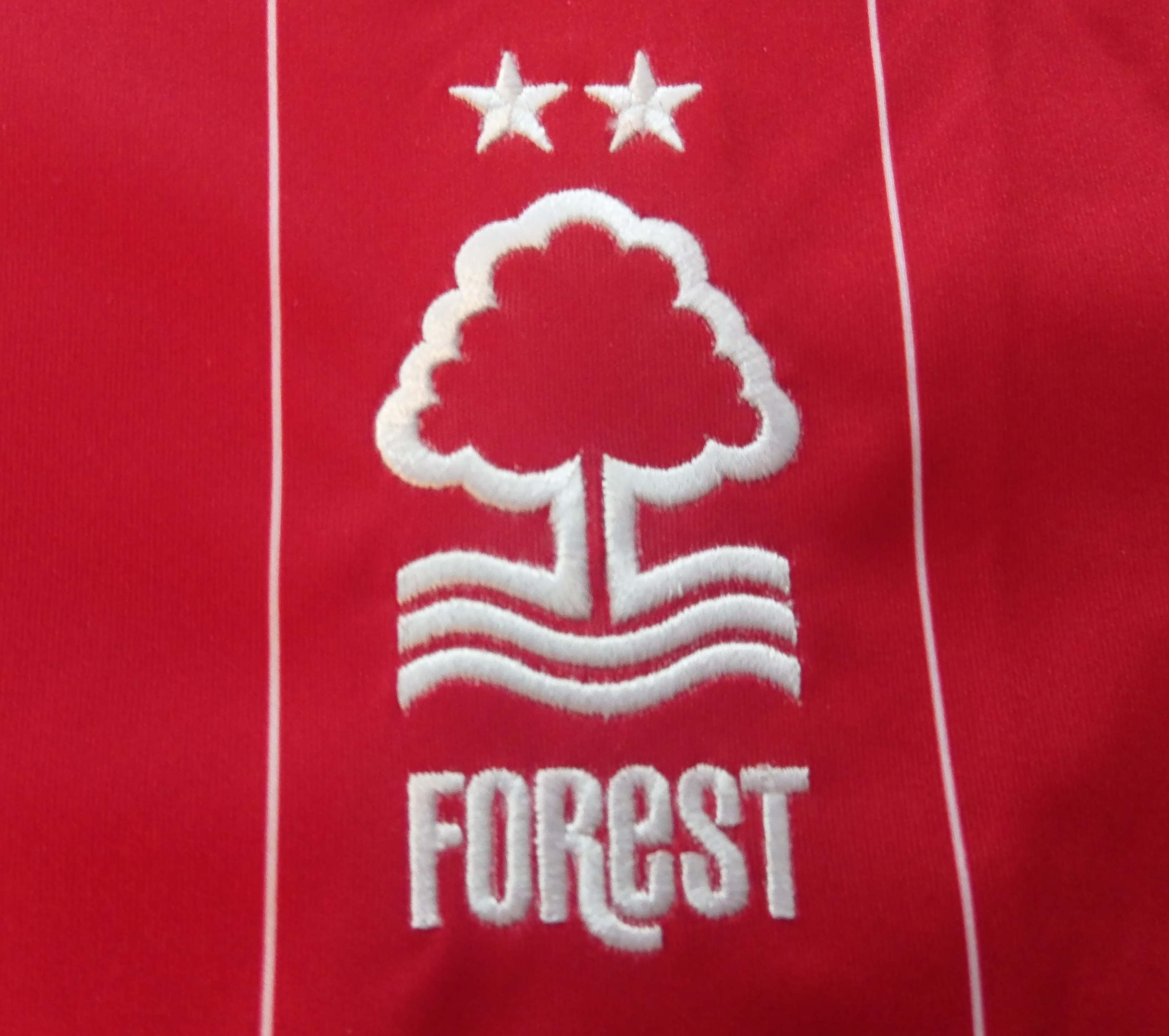 Nottingham forest v leeds betting experts no-risk matched betting canada